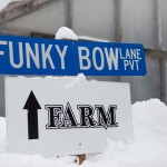 Funky Bow Lane at Funky Bow Brewery